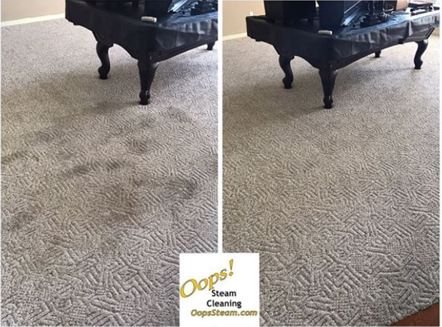 before and after pattern carpet cleaning