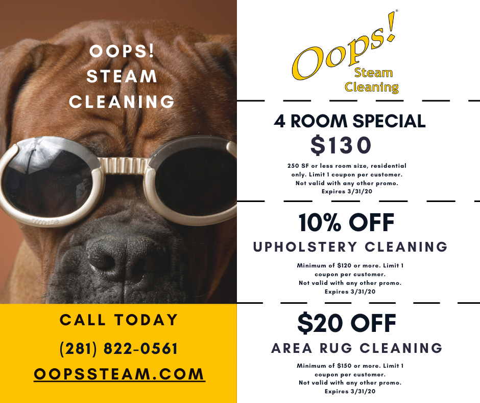 Specials - Oops! Steam Cleaning